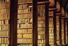 Biblioteka stelaji